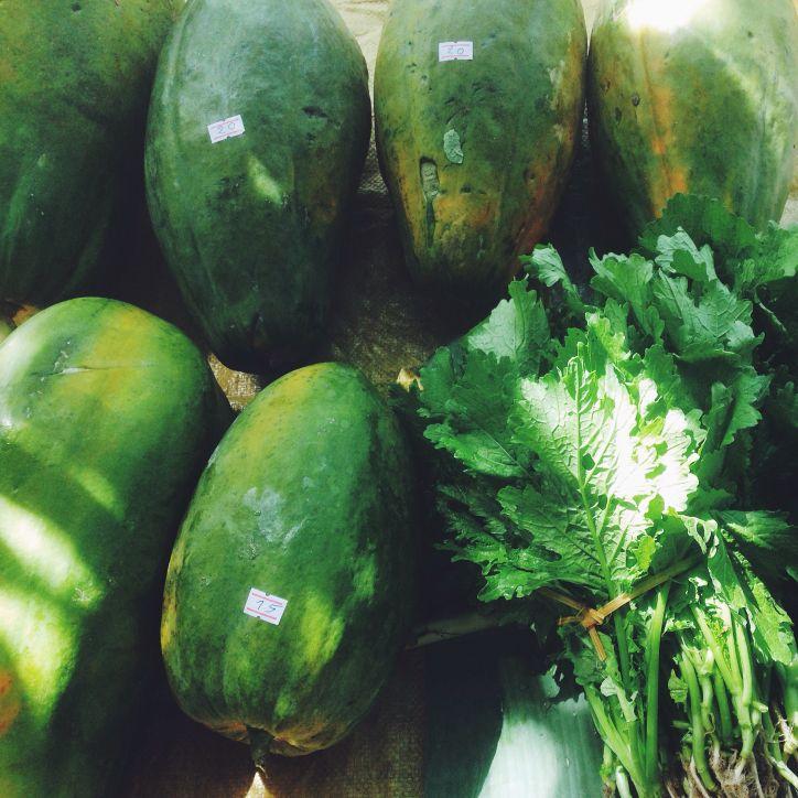Payaja Healthiness online
